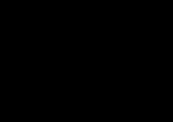 Laiva musta logo tekstillä
